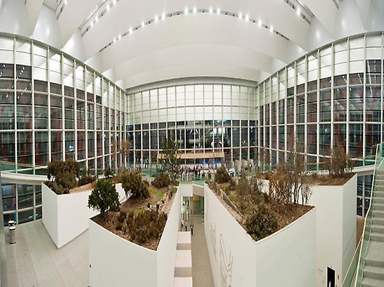 Museo. Interior