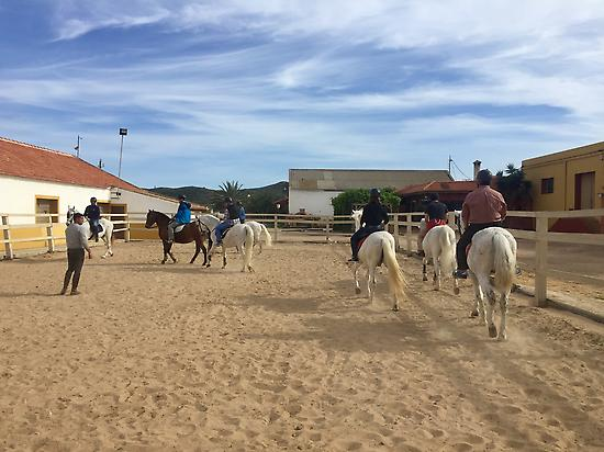 PRACTICE RIDING HORSE BEFORE ROUTE