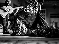 Tablao Flamenco La Fragua