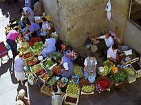 Daily Market