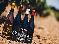Singular wines.