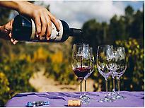 Tasting wines.