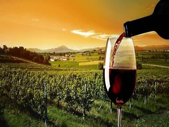 The best wineries, the best wines
