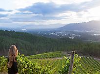 Landscape from ©Terras Gauda winery