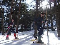 Snowshoes Routes