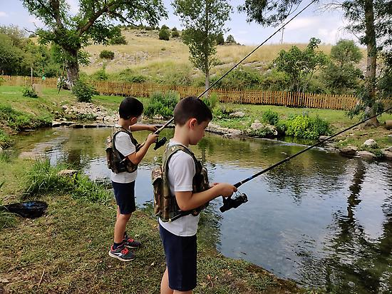 Fishing for trout