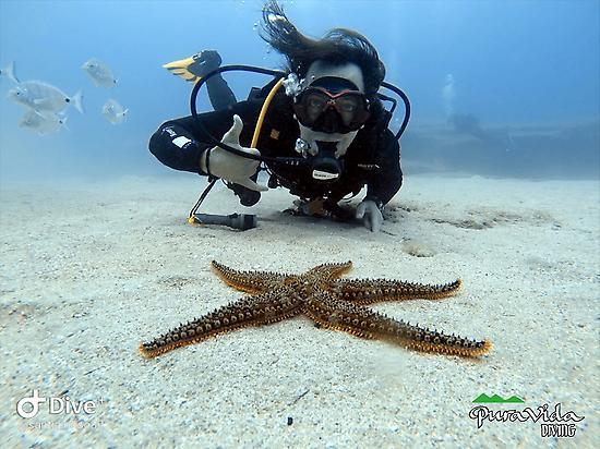 Try Scuba Diving Kurs