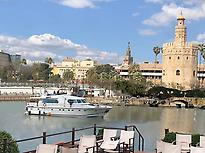 View of the Torre del Oro
