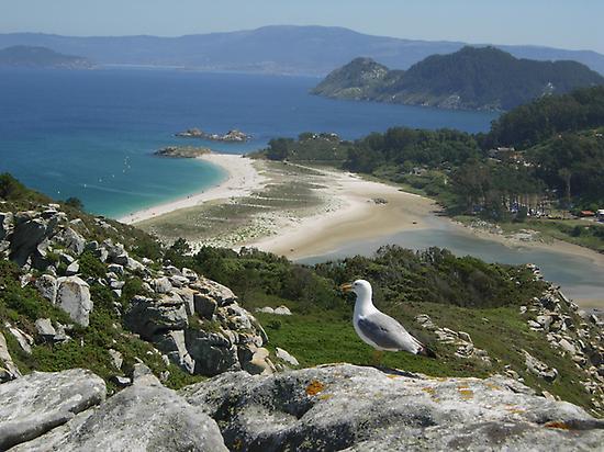 Viewpoint Cies Island
