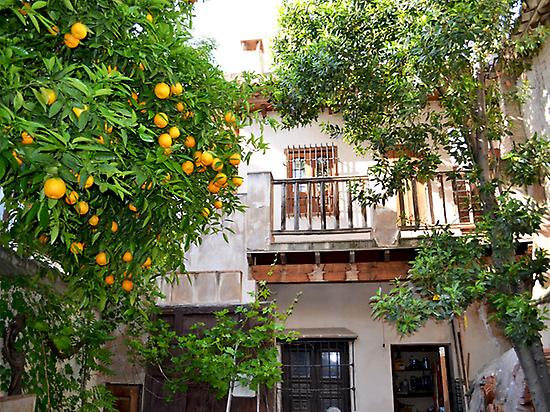 The aroma of orange blossom in the Albai