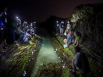 NIGHT TIDEPOOL SAFARI PICTURES 2020 (1)