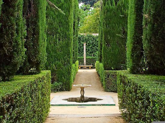 Gardens in the alcazar