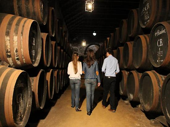 Around the cellar