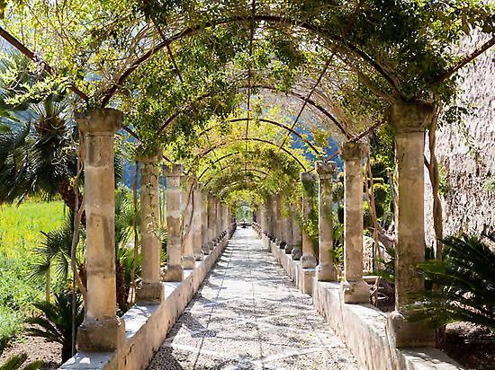 The Pergola - Jardines de Alfabia
