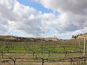 Vilalba dels Arcs from the vineyards