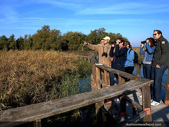 Guided tours in Tablas de Daimiel NP