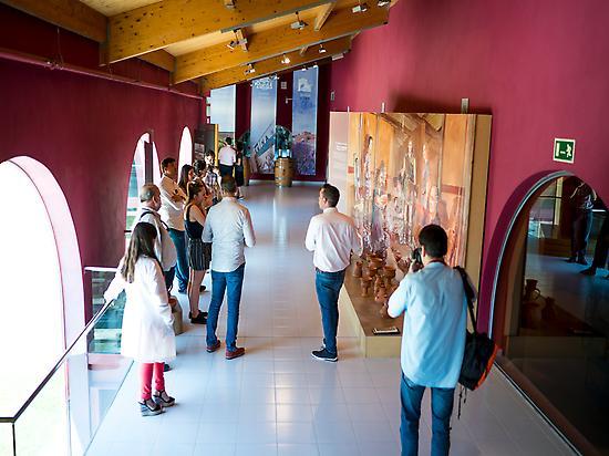 Emina Wine Museum