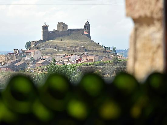 The Castle from Carlos Moro Winery