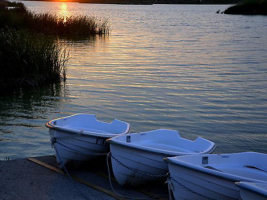 Lake of Ivars and Vila-sana