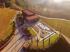 Mas Perinet winery