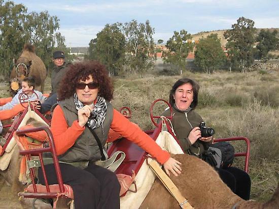 Señoras subidas en el camello