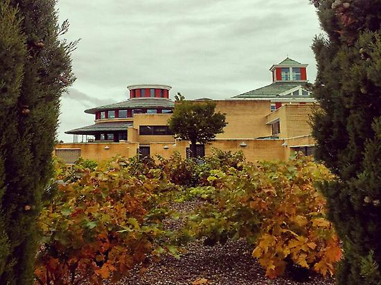 Visit one of the best wine museums
