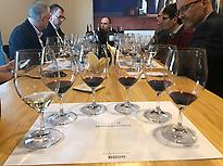 Tasting in Abadía de Retuerta