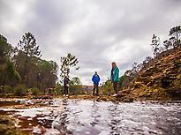 Tinto River