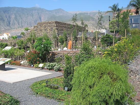 Jardín Venenoso