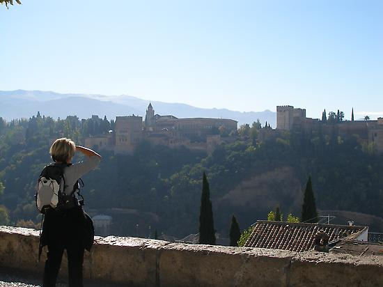 The Alhambra from