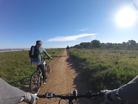 bike tours and electric bicycle rental