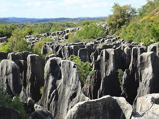 Un laberinto de piedra