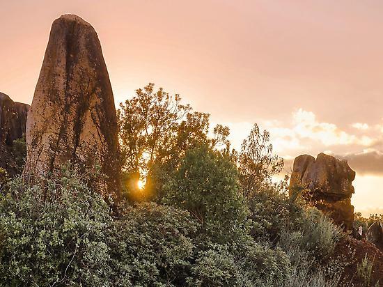 Rocas y vegetación exuberante