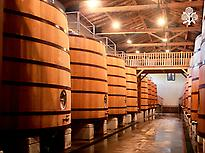 Alcoholic fermentation room