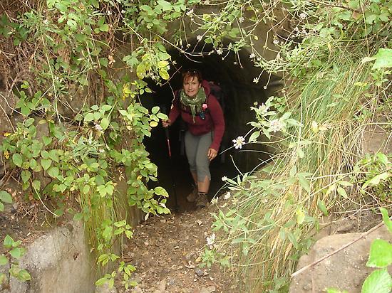 Discovering La Gomera, the Magic Island