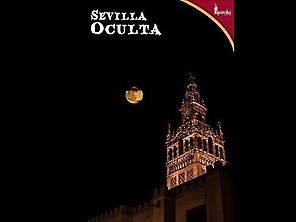 Night view of the Giralda