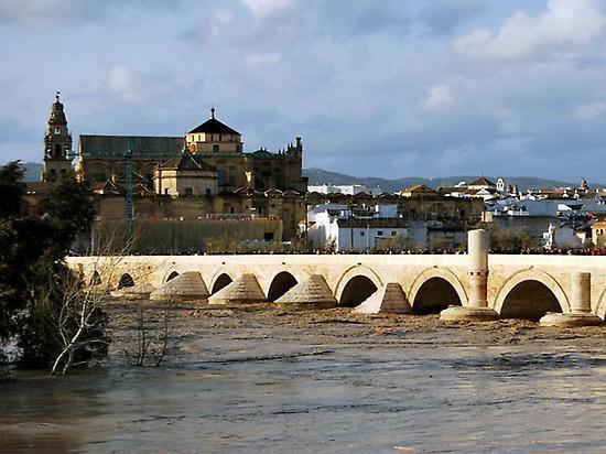 Daytrip from Seville to Córdoba