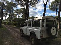 Live an adventure in 4x4 from El Rocio