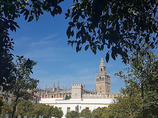 Monumental Seville Tour