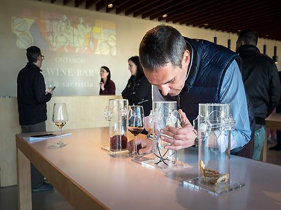 Ontañón, Wine Bar La Sacristia