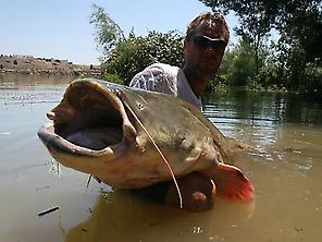The guide Ron Beugelink with a ctfish