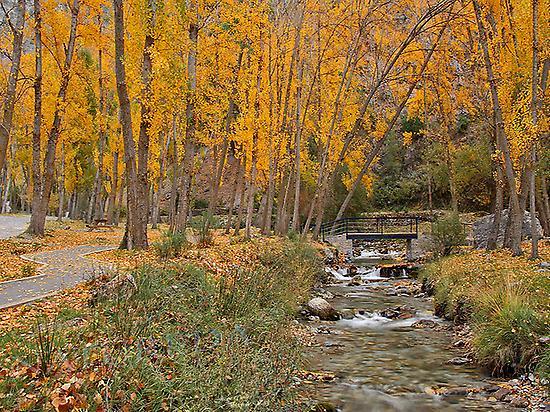 Río de Sierra Nevada