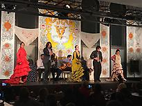 Flamenco en el tablao de la pacheca