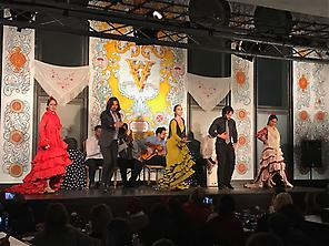 Flamenco dîner + tour