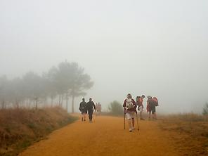 A foggy day on the camino