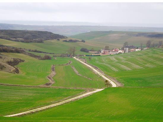 El Camino cerca de Burgos