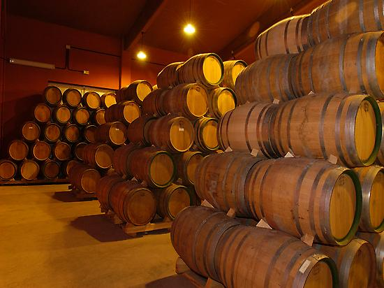 A winery in La Rioja