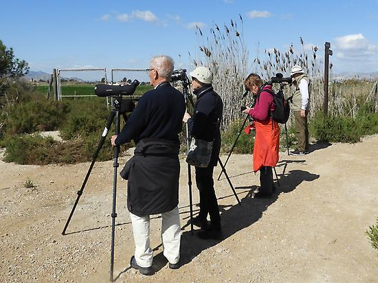 With the group of birders