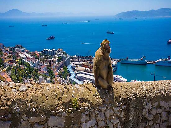 Gibraltar Tour From Málaga