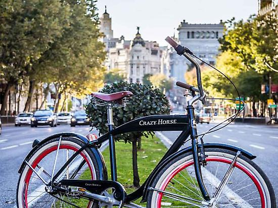 Madrid Highlights Bike Tour(RentandRoll)